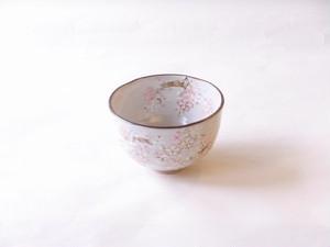 清水焼 俊山 作 京の春 抹茶碗