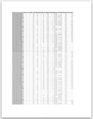 レポート作成時のローデータ