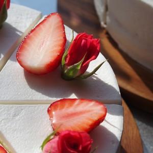 薔薇と苺のショートケーキ 1P 【配送不可】【ネットショップ購入不可】