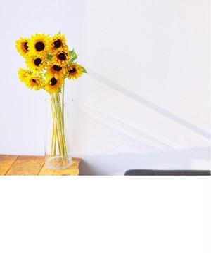 三豊花き部会 ブラウン基調のシックな向日葵!!    サンリッチ マロン 20本