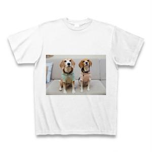 ガオTシャツ