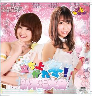 【DVD】11.8(木)新木場大会「立ち上がれ冬」