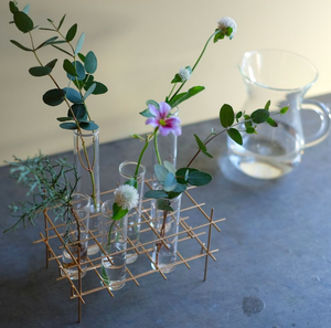 BIRD'S NEST glass test tube vase(S)