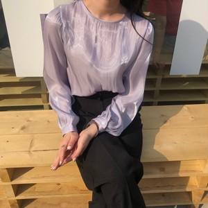 sheer muse blouse
