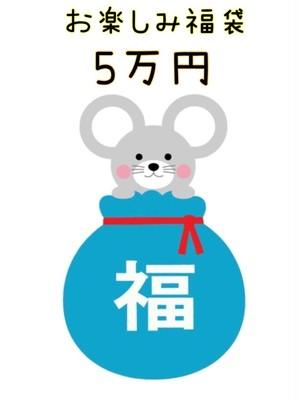 2020年度★お楽しみ♪お年玉福袋 5万円コース