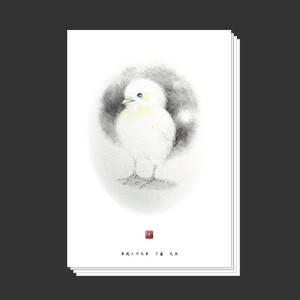 2017年度年賀状(ポストカード・10枚セット)