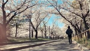 新曲「桜の栞」音源ダウンロード販売