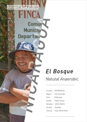 【Favorite 150g】【中〜中深煎り】「ニカラグア エル・ボスケ農園 ナチュラル アナエロビック」【メール便】【おすすめ焙煎度でお届け】