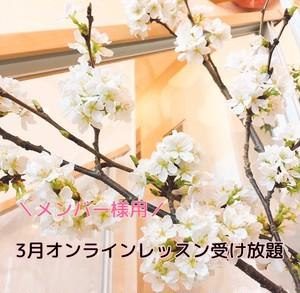 【メンバー様用】3月オンラインレッスン受け放題