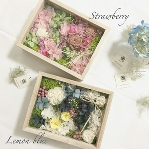 Wood frame flowers(Strawberry / Lemon blue )