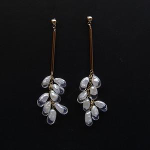 tayutau anemone