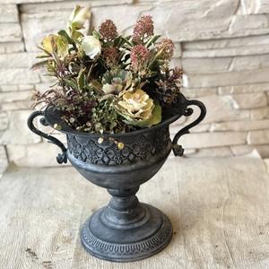 人気のブリキ鉢に♫珍しい植物いっぱい シックなギャザリング寄せ植え