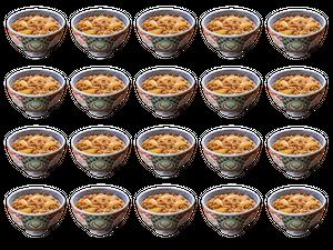 吉野家 牛丼の具 20食セット