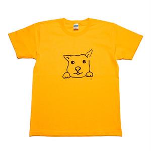 犬Tシャツ M メンズ