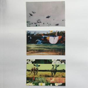 ポストカード3枚セット(秋)大判サイズ