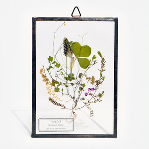 Botanical Frame S16(A_Black)