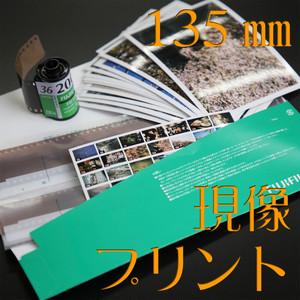 [現像+プリント]:カラーネガ135mmフィルム(フル)