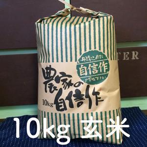 北海道産極上ののせ米(ななつぼし)10kg玄米