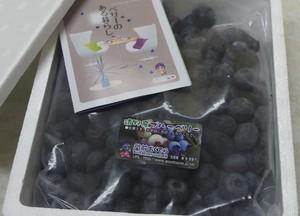 「門前おくでらブルーベリー冷凍」400g 2袋(800g)