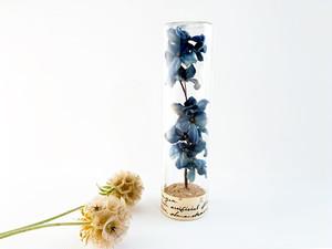 Herbarium : 染花の標本ボトル (L)【アンティークブルーの紫陽花】