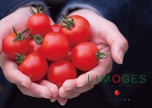 LIMOGES 黒&白蜜トマト 計2kg(各1kgずつ)