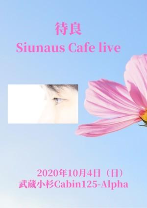 ライブDVD2枚組「Suinaus Cafe Live」2020/10/4@武蔵小杉Cabin125-Alpha