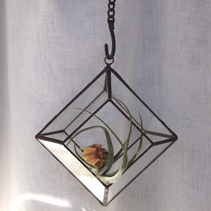 Hanging Terrarium P - Copper