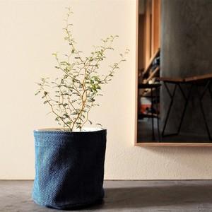 うしじま縫製 | 武州正藍染 鉢カバー【Mサイズ】 一重刺子