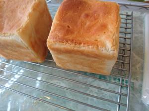 グルテンフリー 玄米粉食パン