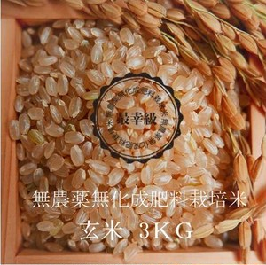 無農薬栽培 〈元年産〉南魚沼産コシヒカリ 玄米3kg
