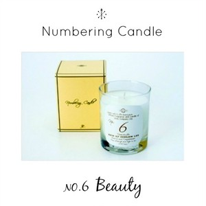 Numbering Candle NO.6