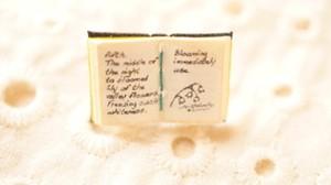 豆本ブローチ「魔女の惚れ薬」バッジ 蝶タック