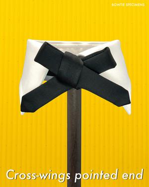 復刻版 クロスウィングス・ポインテッドエンド (ブラックサテン/ソリッド) 作り結び型〈蝶ネクタイ デザイン 黒 歴史 本物 ボウタイ スペシメンズ〉