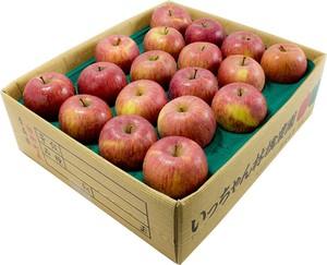 葉取らずサンふじ 3kg 4個セット ギフト用 | りんごの王様がさらに美味しく