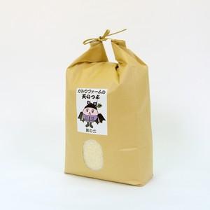 天のつぶ5kg其の二 カトウファームオリジナル栽培米(減農薬)
