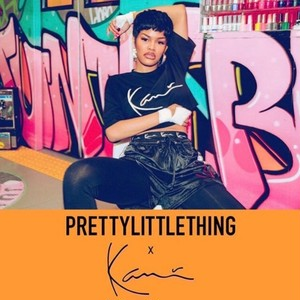 "PRETTY LITTLE THING × KARL KANI ""EMBROIDED CROP T SHIRT"""