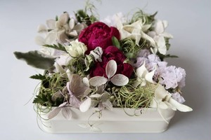 FLOWER can gift(peony white)