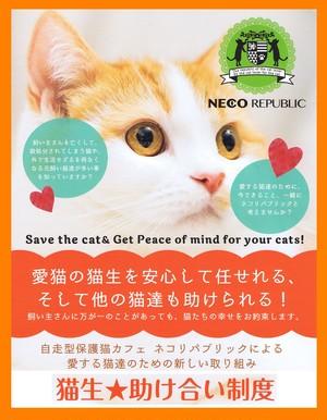 猫生★助け合い制度『一般猫』3年分一括払い(初回3年分)