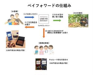 【ペイフォワード】3,000円セット(生チョコ・チョコレートバー・カカオニブ)