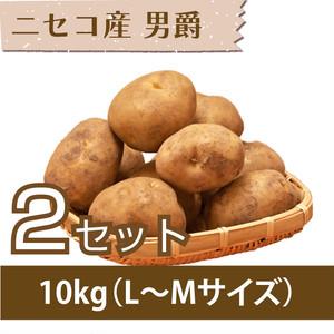 【じゃがいも】ニセコ産 男爵いも 10kg(L〜Mサイズ)×2セット