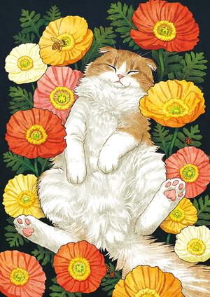 猫と花言葉「安らぎ」