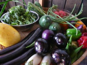無農薬野菜セット(送料込み)