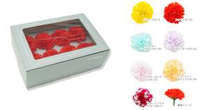 カーネーション 8輪BOX(色:7種類)