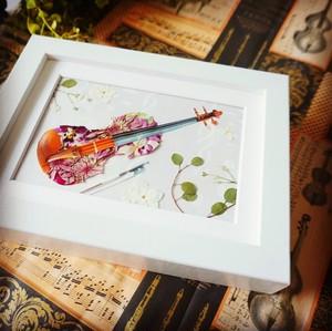 バイオリンのボタニカルアート