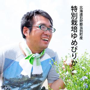 北海道石狩郡当別町産特別栽培ゆめぴりか5kg
