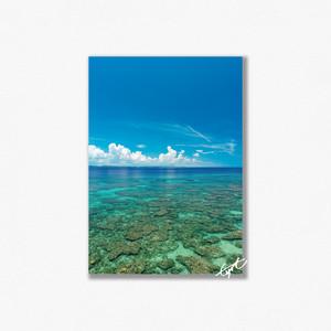 ロマンスロードの海(縦)