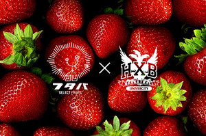 "Graphic Mesh Basket Ball Pant ""STRAWBERRY"""