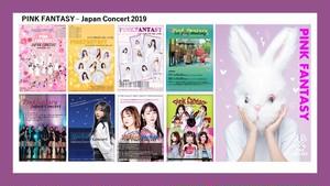 【PINK FANTASY】9枚セット/2Lサイズ=2019年日本公演POSTER