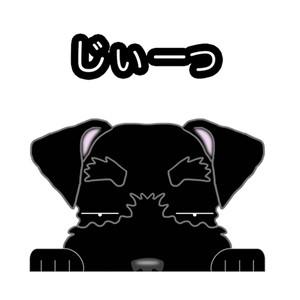 見てまステッカー【ミニチュアシュナウザー】 犬 ステッカー シール