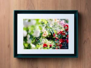 PhotoSketch&BOXSCAPE -Rose02-